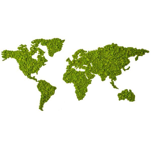 Planisfero® acciaio inox e lichene stabilizzato